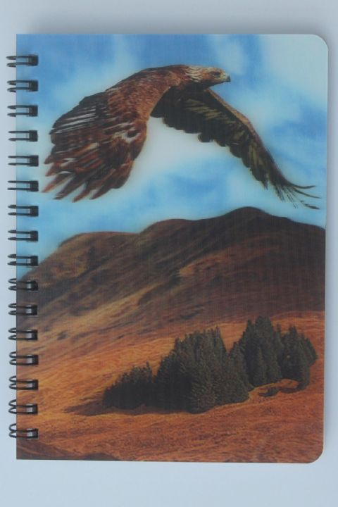 Eagle in flight with 3D picture Notebook